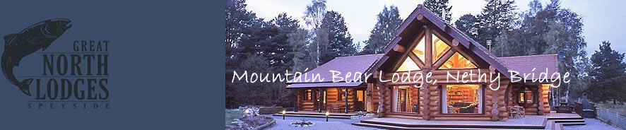 Mountain Bear Lodge