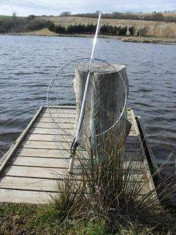 Fastnet Superior Salmon Gye Landing Net
